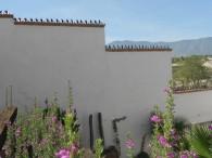 Cactuspicos 4-3