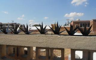 Cactuspicos 9-1