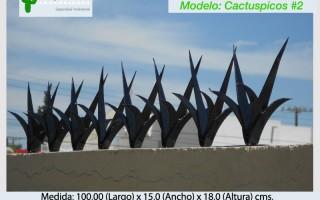 Cactuspicos2
