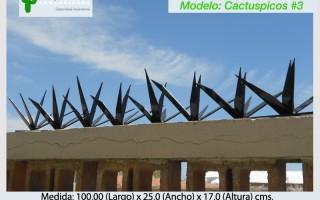 Cactuspicos3