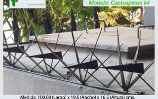 Cactuspicos4