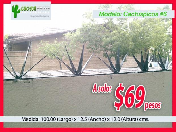 Cactuspicos6