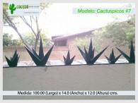 Cactuspicos7