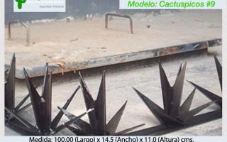 Cactuspicos9