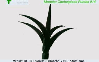 Cactuspicos14